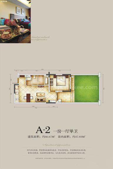 A-2户型 1房1厅1卫 建面46.67㎡