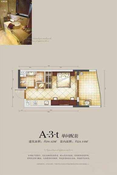 A-3-t户型 单间配套 建筑面积:约30.42㎡