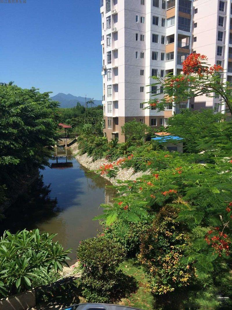 阳江雅苑养生城实景图