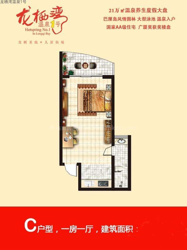 龙栖湾温泉1号C户型 1室1厅1卫1厨  建筑面积43㎡