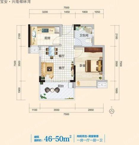 A户型 1室1厅1卫1厨  建筑面积46-50㎡
