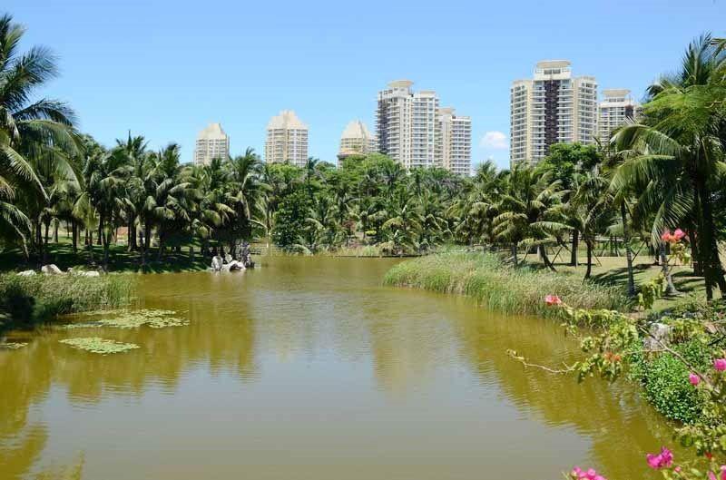 碧桂园东海岸实景图