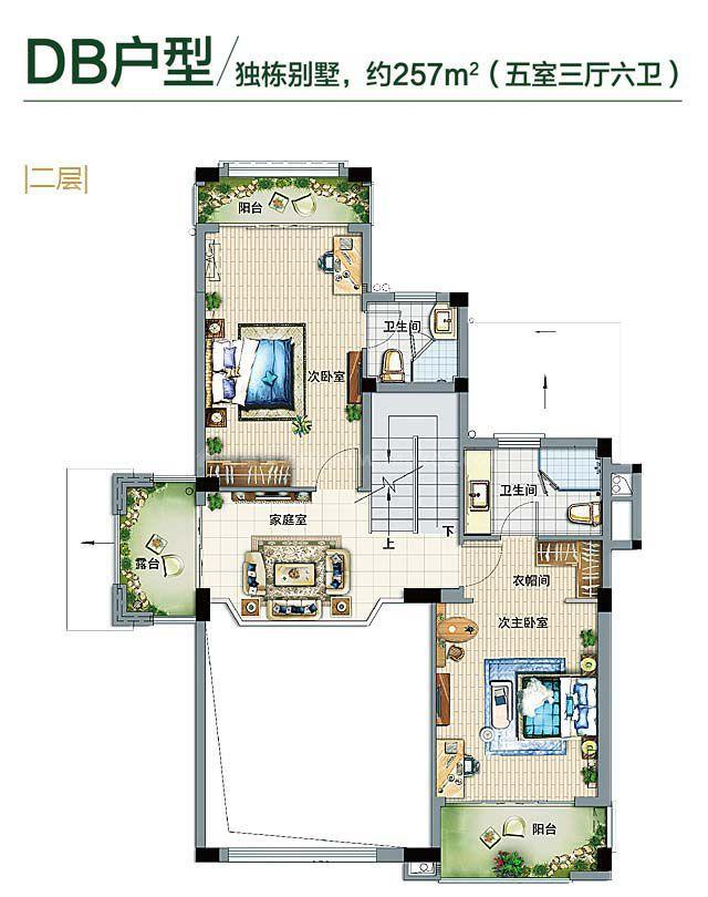 铂丽湾独栋别墅DB户型 5房3厅6卫1厨 257㎡(二层)