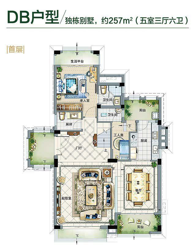 铂丽湾独栋别墅DB户型 5房3厅6卫1厨 257㎡(首层)