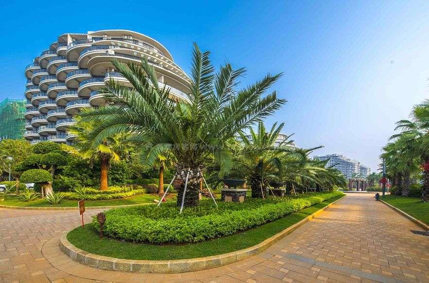 晋唐海湾实景图