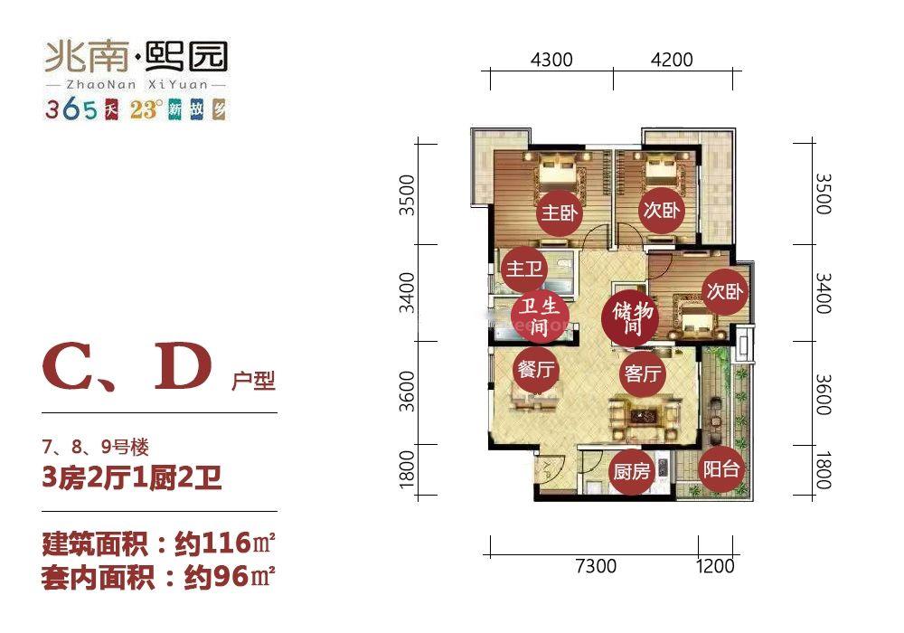 C、D户型 3房2厅1厨2卫 116㎡