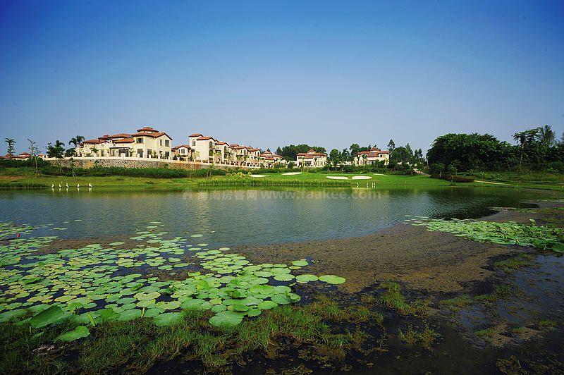 富力红树湾实景图