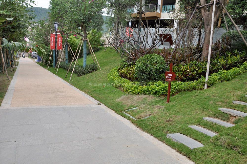 别墅区绿化