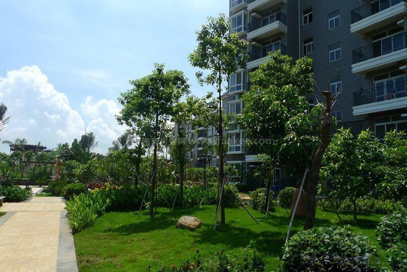 盈滨绿生花园实景图