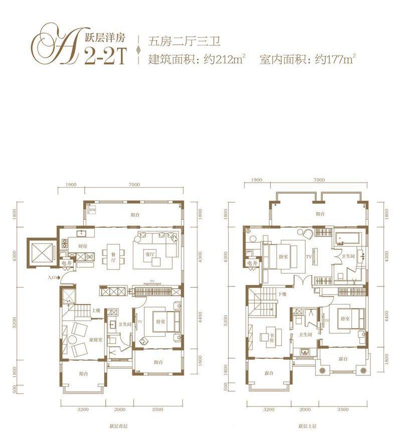 跃层洋房A2-2T户型 5室2厅3卫1厨  建筑面积212㎡