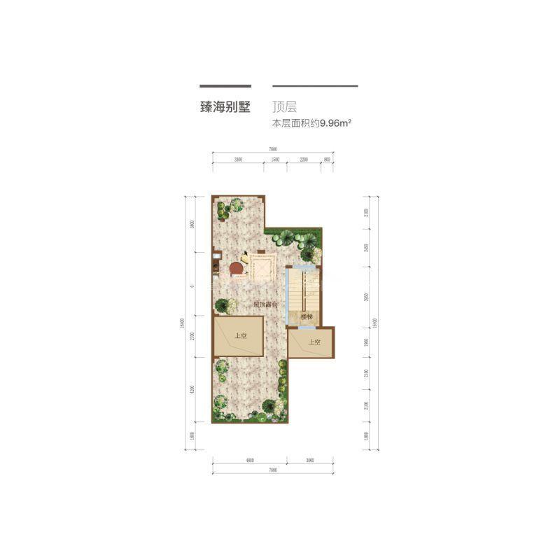 臻海别墅户型-4室3厅3卫1厨 9.96平