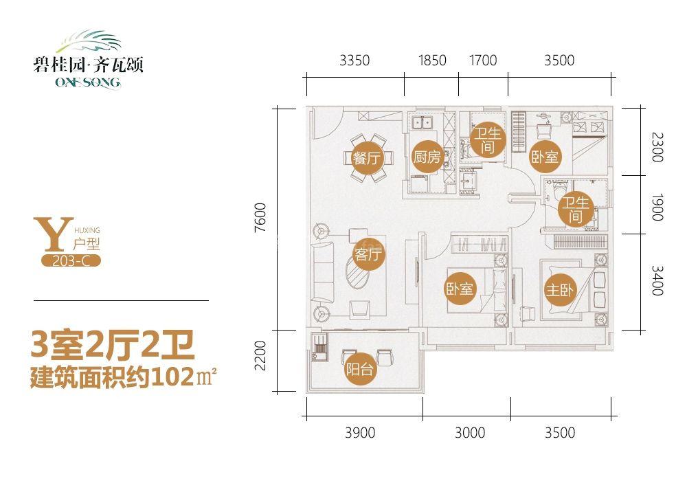 碧桂园齐瓦颂Y户型 3室2厅2卫1厨 建筑面积102㎡