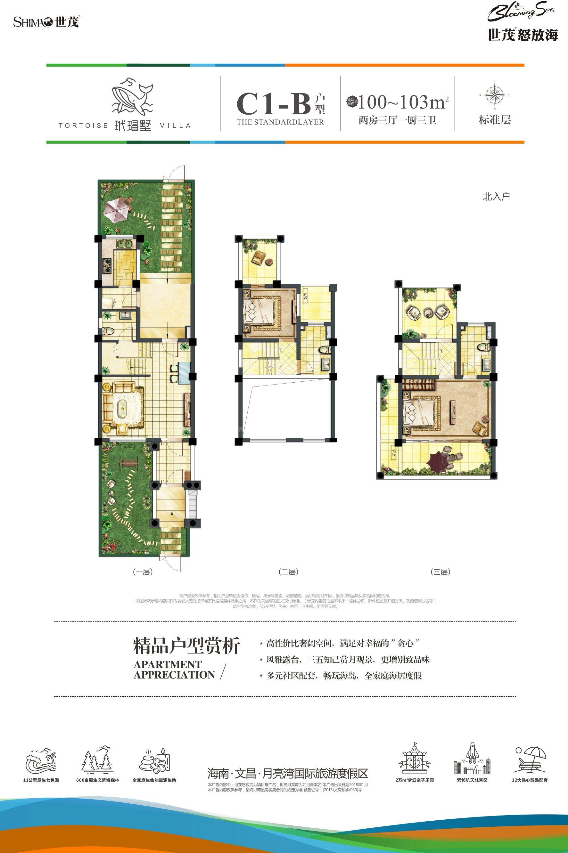 C1-B户型别墅 2房2厅1厨3卫 建面100-103㎡