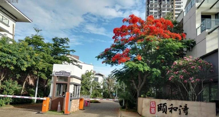 临高信基颐和湾在售剩余顶楼复式 均价9000元/㎡