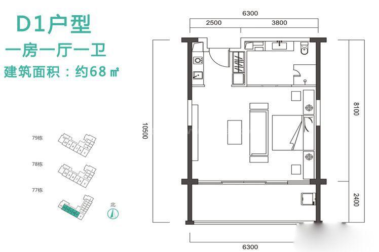 D1户型 1室1厅1卫1厨 建筑面积:68.00㎡