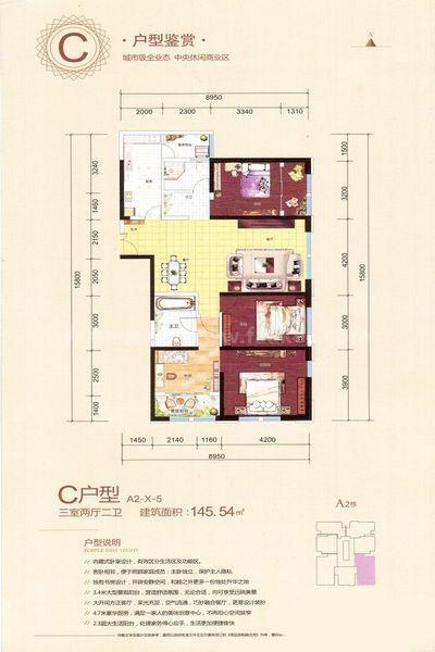 A2-C户型-X-5 3室2厅2卫1厨 建筑面积:145㎡