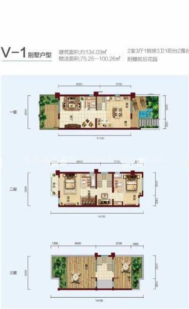 V-1别墅户型 2室3厅3卫1厨 建筑面积:134㎡