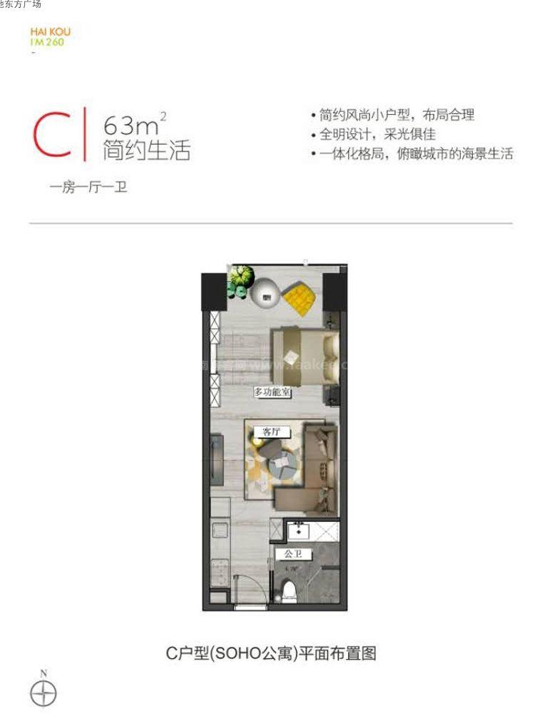 C户型图 1室1厅1卫  建筑面积63㎡