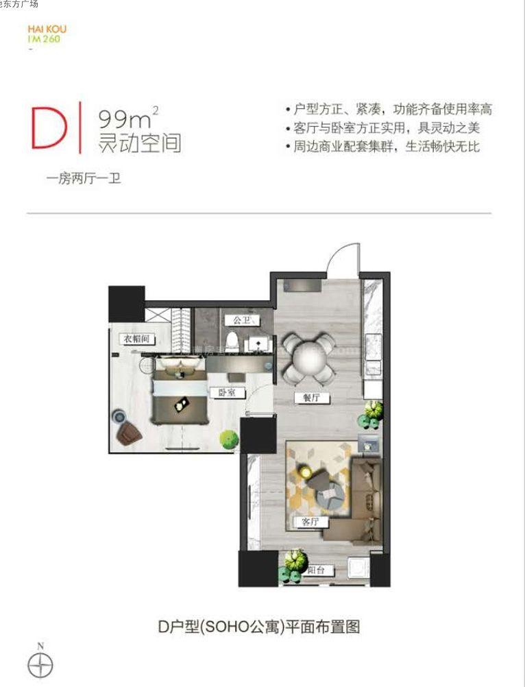 D户型图 1室2厅1卫  建筑面积99㎡