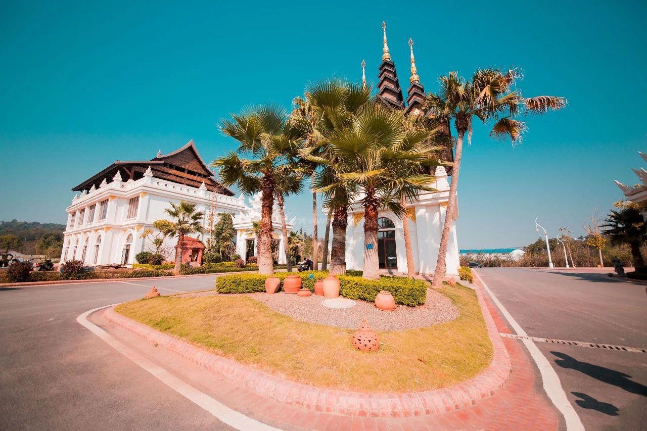 勐巴拉雨林小镇图片
