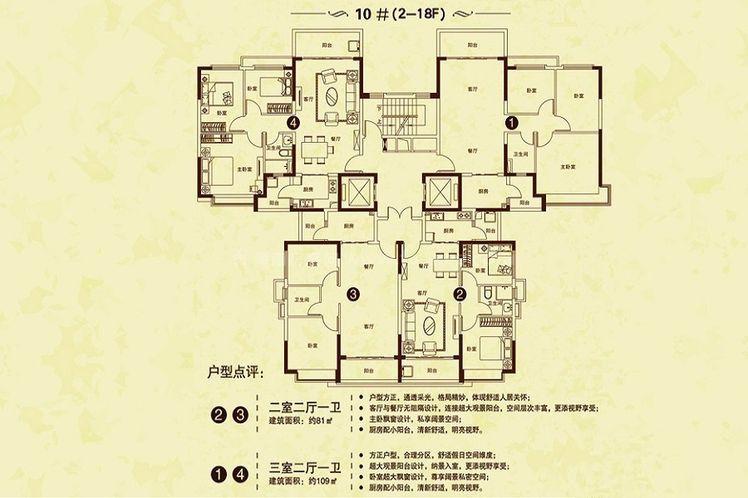 10#(2-18F)户型 2室2厅1卫 建面81㎡