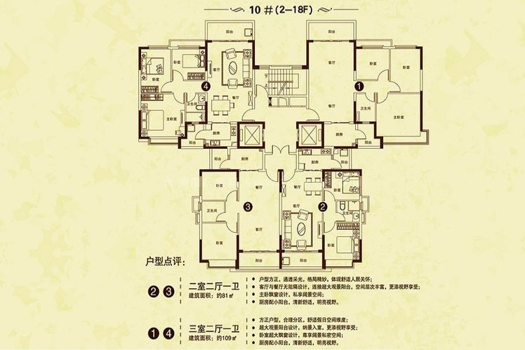 10#(2-18F)户型 2室2厅1卫1厨 建筑面积:81.00㎡