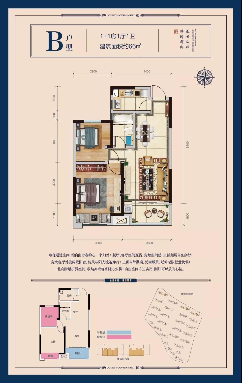 B户型 1+1室1厅2卫 建面66㎡