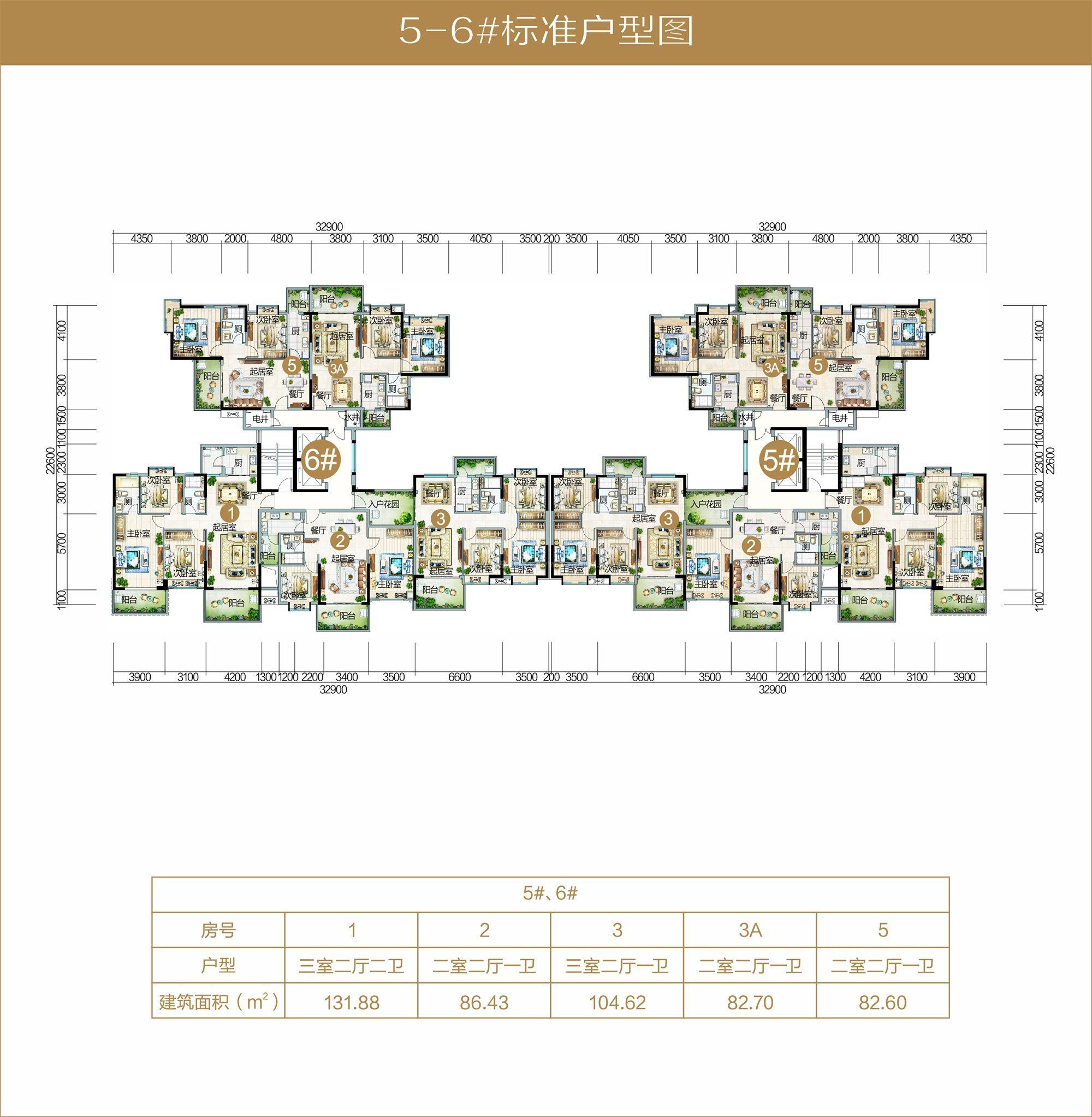 A05区5-6栋标准户型图