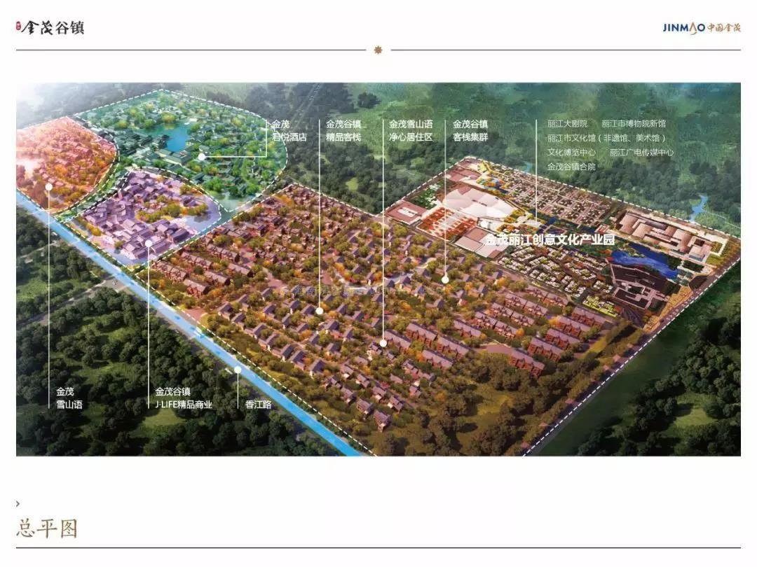 金茂谷镇总平面规划图