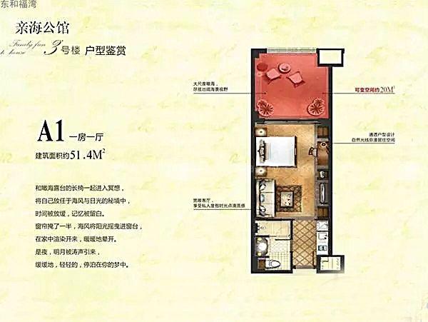 东和福湾A1户型1室1厅建筑面积51.4㎡