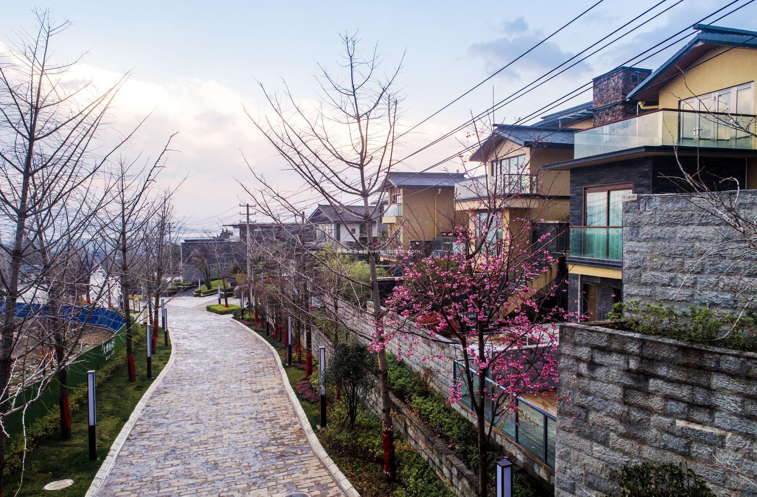 大理的小院子中区推出新春购房特惠活动,购房享优惠