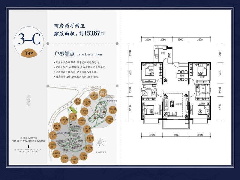 3-C户型 4室2厅2卫 建筑面积:154㎡