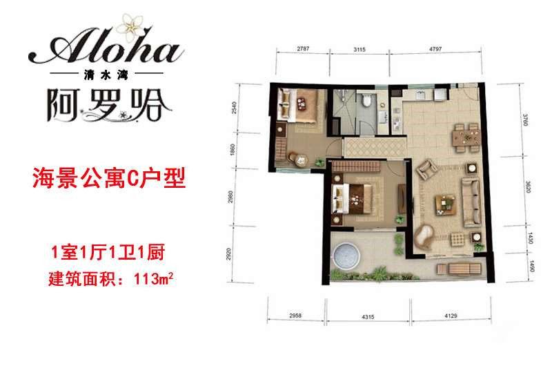 海景公寓C戶型 1房1廳1衛1廚 建面113㎡