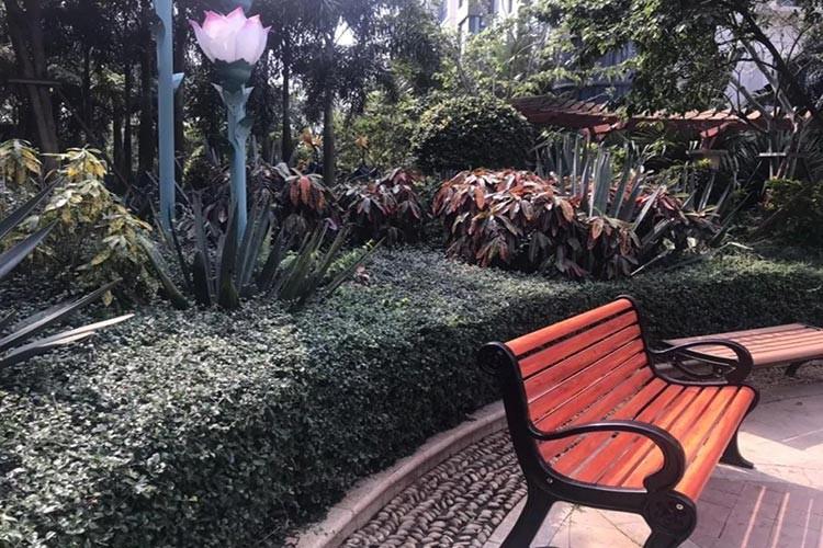 椰海温泉嘉苑实景图