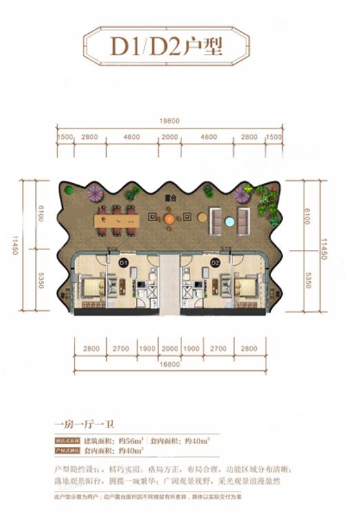 D1D2户型 1室1厅1卫 建面56㎡