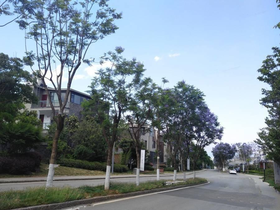 云南大理的小院子南区建面174㎡观海合院  价格约380万/套