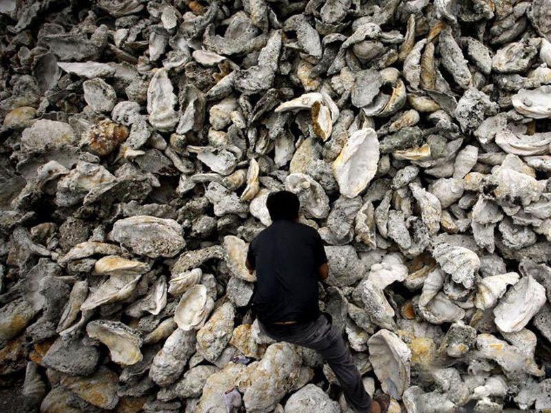 周邊潭門貝殼