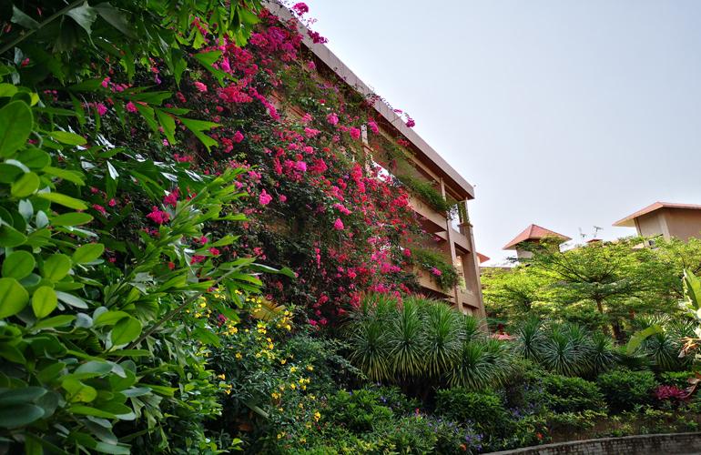 芭提雅火山岩温泉小镇实景图