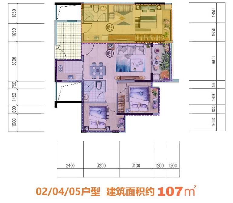 5#02/04/05双钥匙户型  2房1卫&1房1卫 建面107㎡